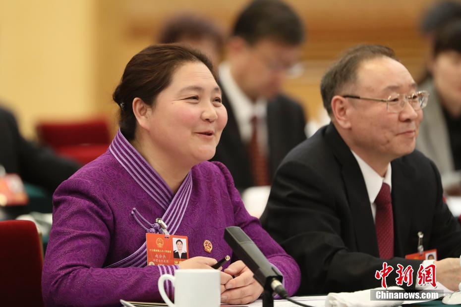 内蒙古自治区代表团举行全体会议审议政府工作报告