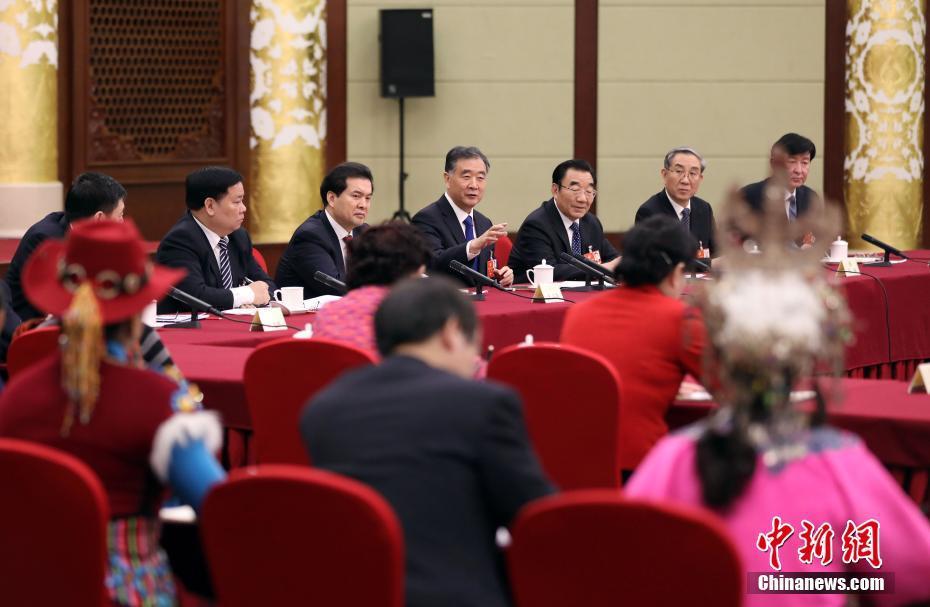 汪洋参加全国政协十三届一次会议少数民族界委员联组会