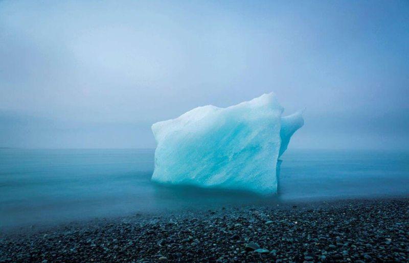 美到窒息!美国大自然保护协会公布摄影比赛获奖作品